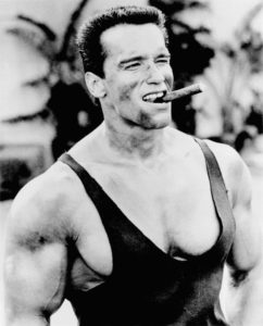 Arnold Schwarzenegger Height, Weight, Age and Full Body ...