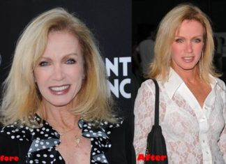donna mills cover